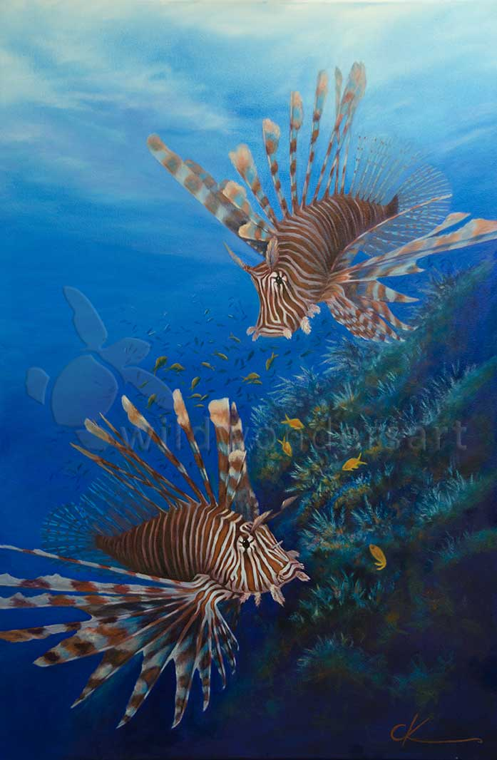 lionfish - reef predators