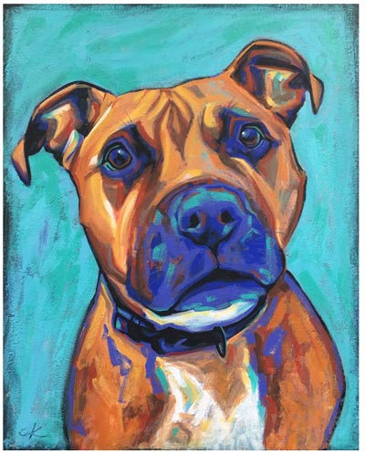 animal portraits, dog