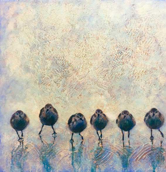 birds, beach
